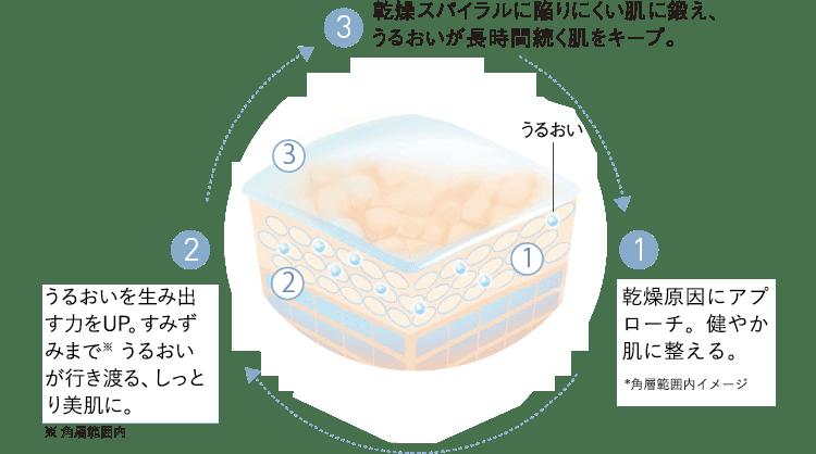(1)乾燥原因にアプローチ。健やか肌に整える。*角層範囲内イメージ(2)うるおいを生み出す力をUP。すみずみまで※ うるおいが行き渡る、しっとり美肌に。※ 角層範囲内 (3)乾燥スパイラルに陥りにくい肌に鍛え、うるおいが長時間続く肌をキープ。